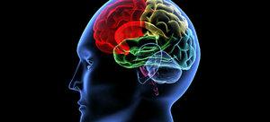 Пациент в коме общается при помощи силы мысли