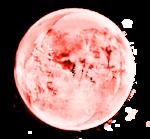 xcen-bda-el (8).png