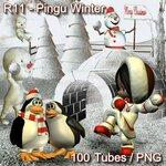 R11 - Pingu Winter.jpg