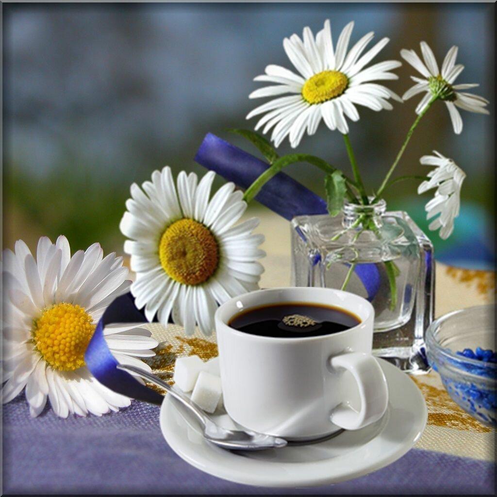 Открытки с добрым утром - Бесплатные Открытки на 70