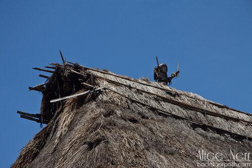 фигурки на крышах, Флорес, Индонезия