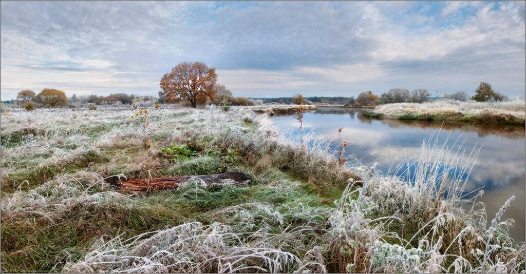 Сегодня ночью в Костромской области возможны заморозки