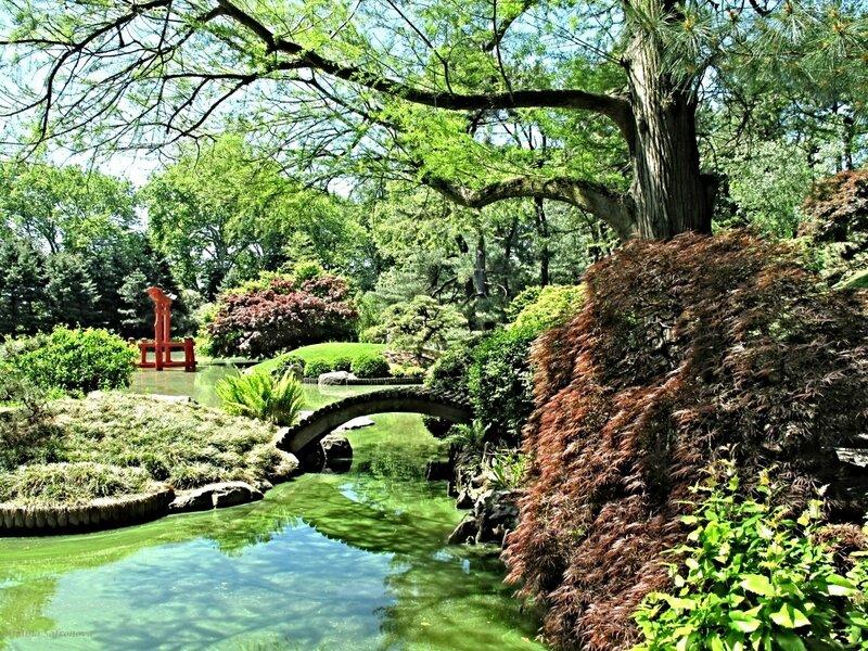 зеленый май. Prospect Park, Brooklyn