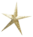 mfisher-star2a.png