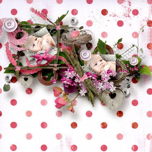 «Day Rose» 0_98193_5cdd9730_L