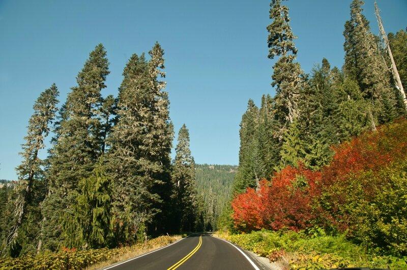 Осенний дорожный пейзаж