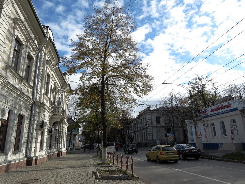 Как уже говорилось, бульвар Штефан чел Маре делит Старый Кишинёв на Верхний  и Нижний центр, парадный и непарадный районы соответственно. c34e7cb4a71