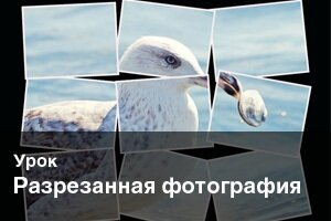 Урок: Разрезанная фотография