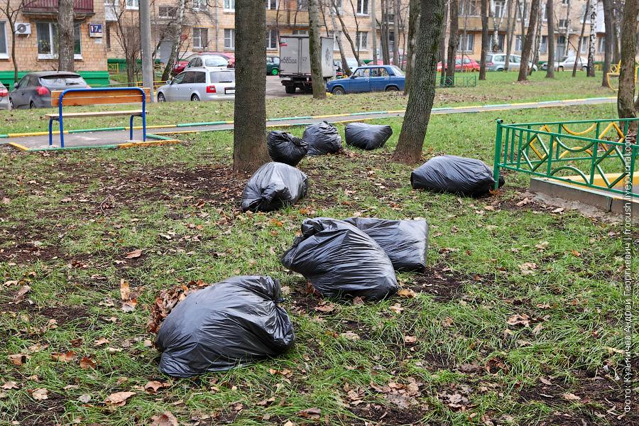 мешки с опавшей листвой под деревьями