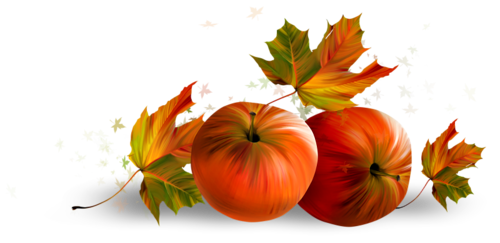 осень (83).png