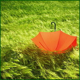 ИгроКлуб Оранжевый зонтик. Развивающий игры для детей и их родителей
