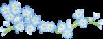 цветы-(256).png