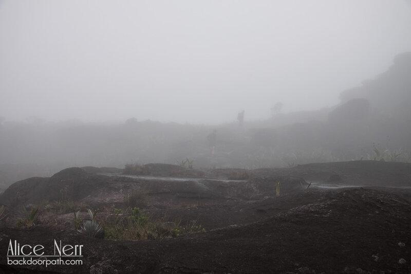 Рорайма в тумане-облаке