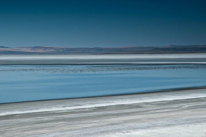 Соленое болото