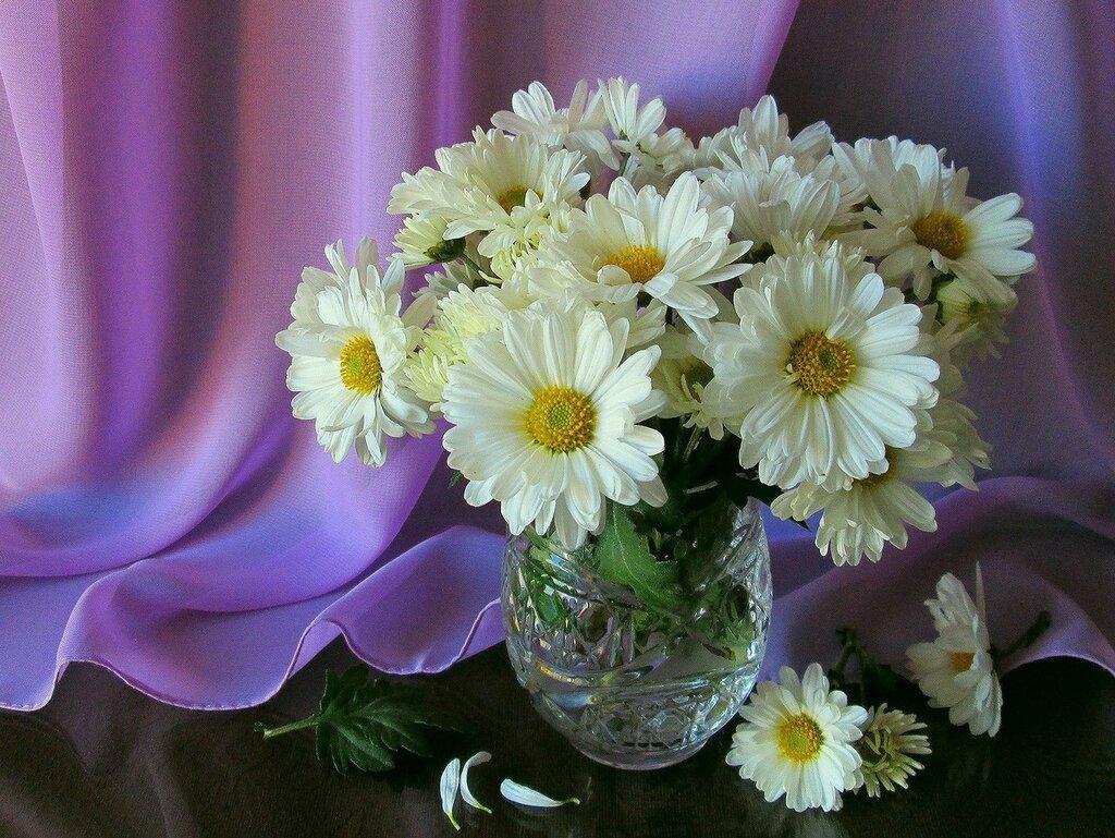 Букетик белых хризантем Напоминает о тебе