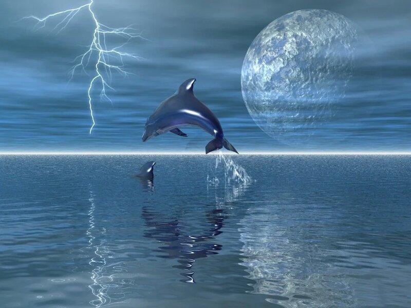 Дельфины анимированные в картинках
