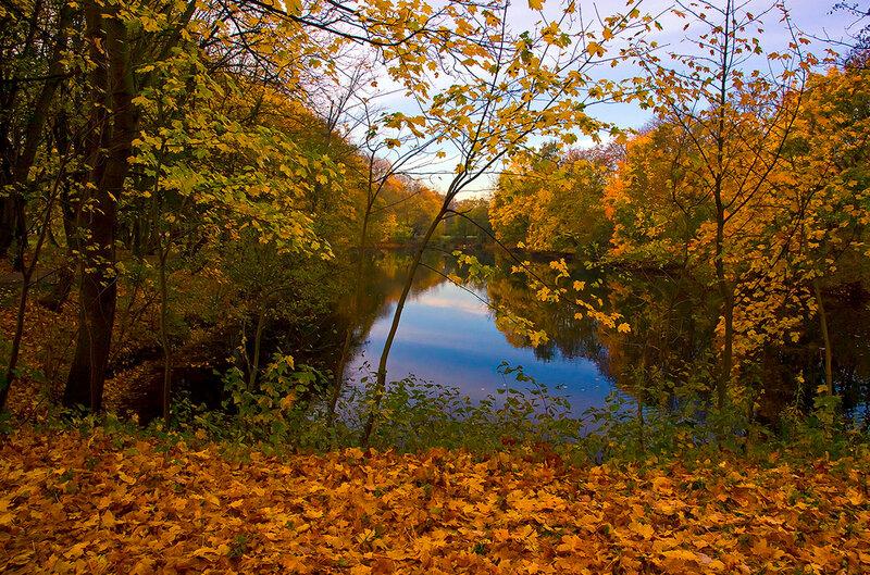 Видишь, золото осень бросает к ногам