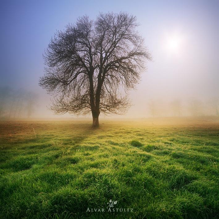 Пейзажи. Фотограф Alvar Ast?lez