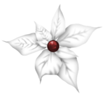 BD-Christmas-Flower3.png