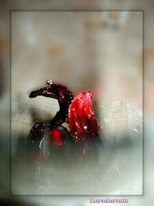Как употреблять сироп из цветов хибикуса