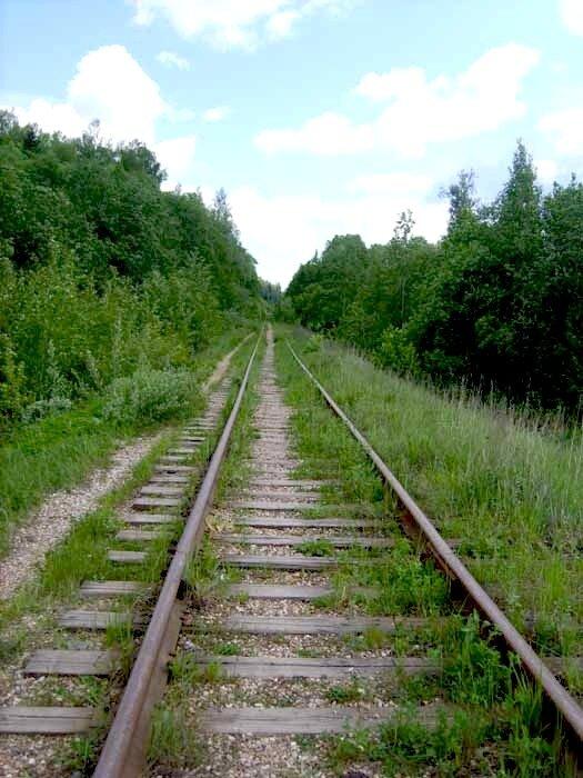 железнодорожная ветка на Морево