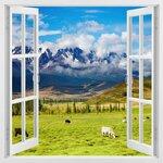 phoca_thumb_l_window-265.jpg