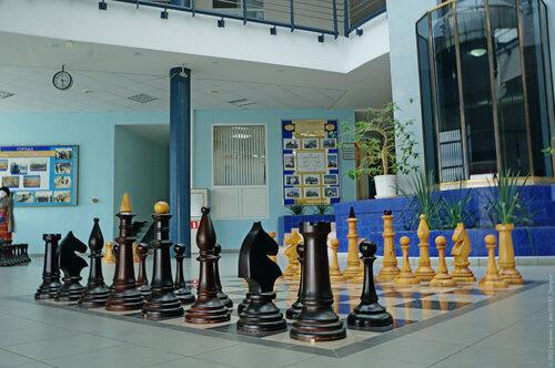 "Шахматы в ""Дворце шахмат"""