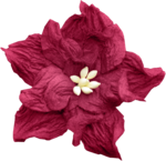 LaurieAnnHGD_AutumnGlow_Flower3.png