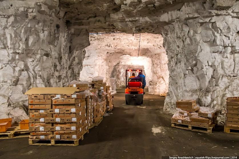 5. Суммарная вместимость всех залов и коридоров составила 16400 тонн (это 200 вагонов)! Со всего Сов