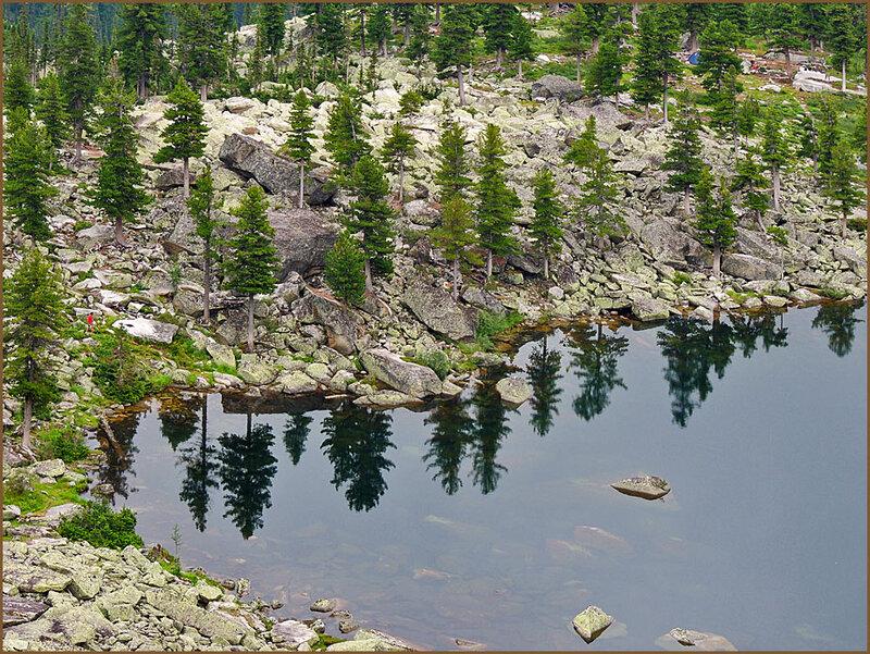 Ресницы озера