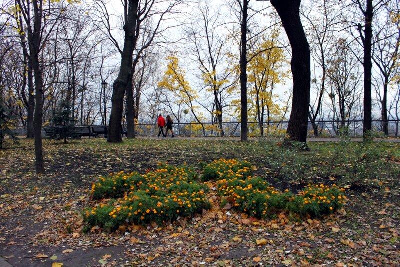 Клумба в Хрещатом парке