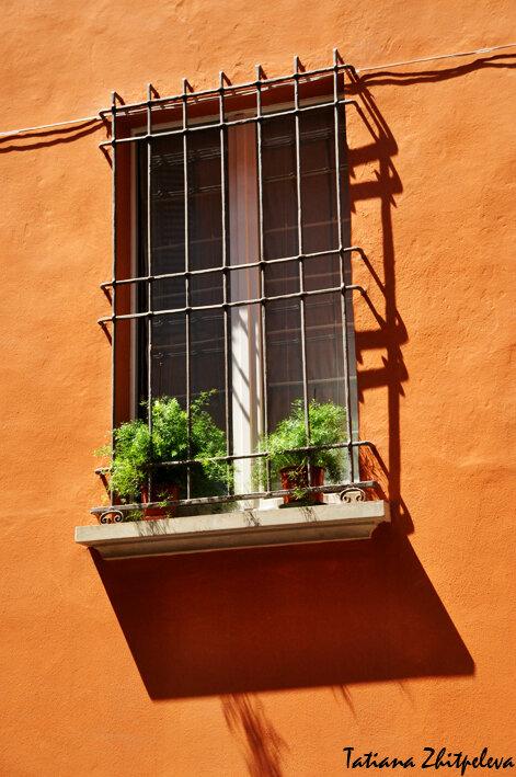 Болонское окно