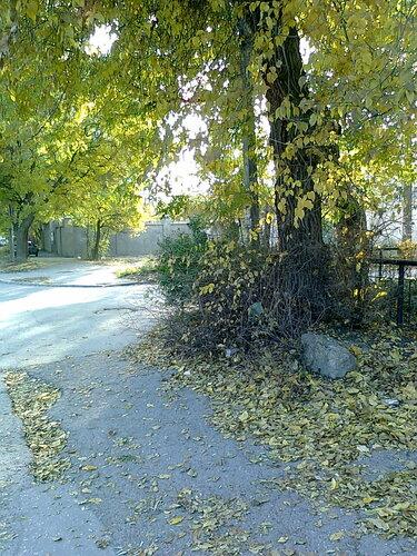 Осенние мотивы в закоулках Евпатории :-)