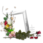 saskia_jedorssurdesroses_clusters (3).png