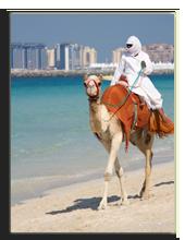 ОАЭ. Дубаи. Фото RuthBlack - Depositphotos