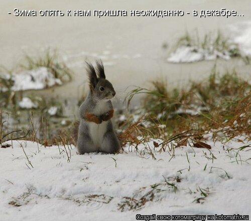 http://img-fotki.yandex.ru/get/6517/131884990.32/0_8ea4e_57107e9f_L.jpg