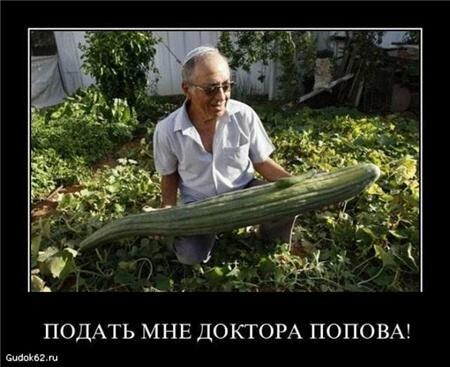 Продаётся огурец из задницы доктора Попова