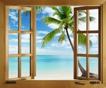 phoca_thumb_l_window-270.jpg