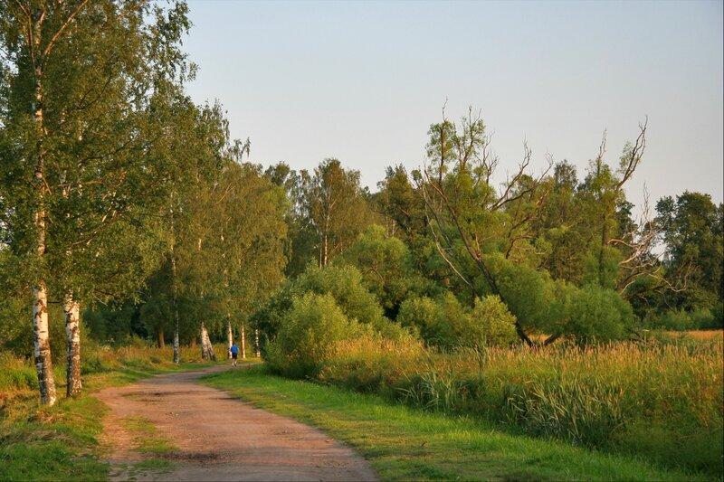 Отдельный (Нижний) парк, Царское Село
