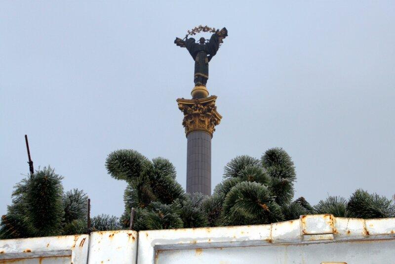 Искусственная хвоя для главной елки Киева 2013