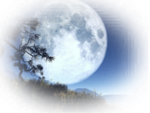 IoM_Graphics_Landscape_21_small.png