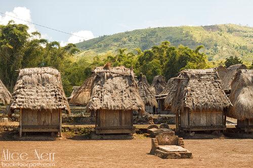 маленькие домики - женский символ, Вого, Флорес, Индонезия
