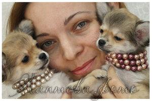 http://img-fotki.yandex.ru/get/6518/162753204.10/0_b5b9d_9d9fc9ff_M.jpg
