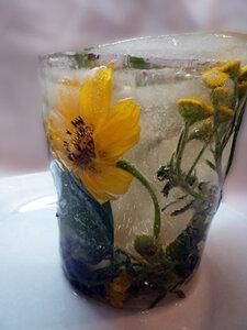 Чудесный стакан для напитка из чая