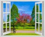 phoca_thumb_l_window-145.jpg
