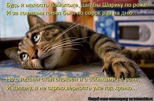 http://img-fotki.yandex.ru/get/6518/22466477.179/0_13d92c_66775119_L.jpg