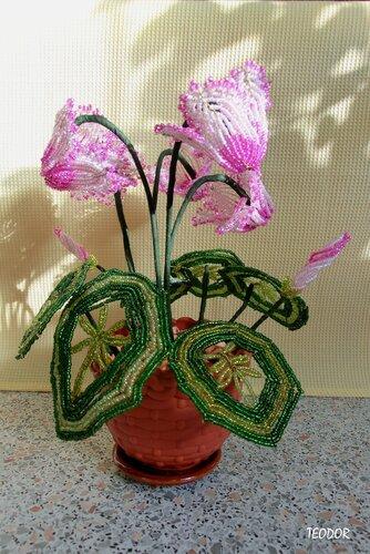 Цикламен из бисера.  Работа моей мамы.  Этот нежный цветок занял своё место в её коллекции работ буквально вчера.