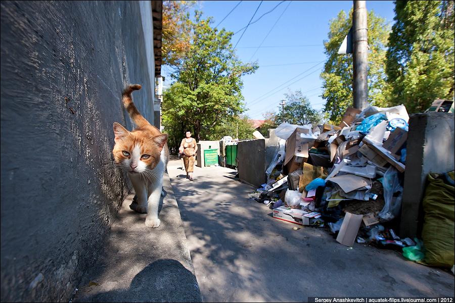 Севастополь. Город-герой или город-свалка?