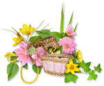 DBB_gardenflowers_cluster02.png
