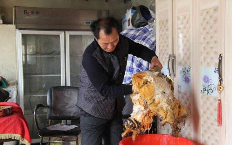 Огромный гриб бессмертия нашел везучий китаец